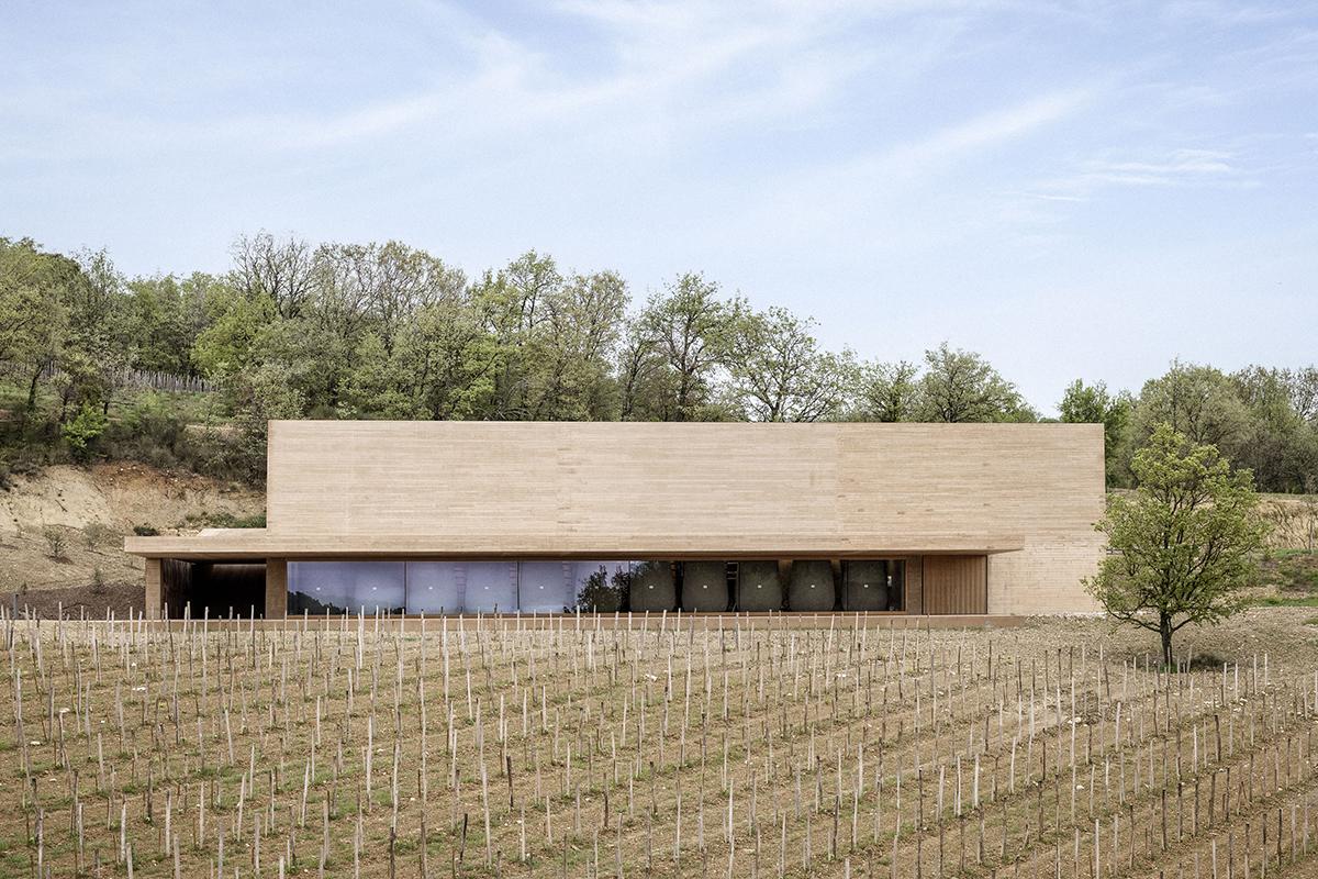 Art and wine cellar