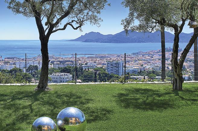 Cannes Californie, une valeur sûre